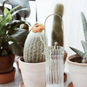 Bình cắm hoa, lọ hoa thủy tinh có quai treo 2