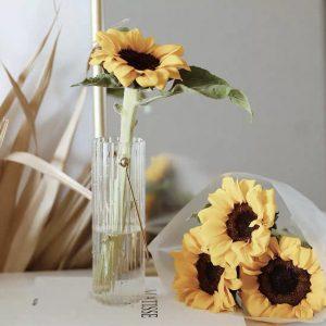 Bình cắm hoa, lọ hoa thủy tinh có quai treo 1