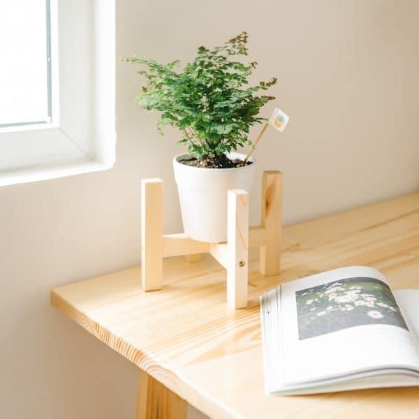 Đôn gỗ để cây cảnh, kệ chậu hoa gỗ